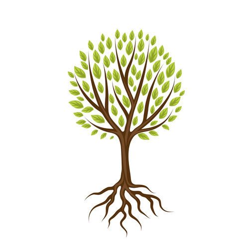 Tree with roots and leaves. Natural illustration symbolizes holistic health services at the Gut Authority,  functional medicine doctor in Pensacola