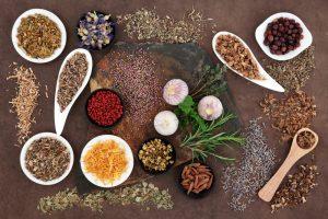Herbal medicine selection used holistic medicine over brown lokta paper background.
